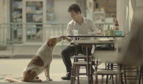 泰國感人廣告