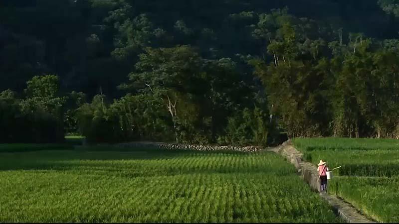 農村短片拍攝-大坪社區(國語版)
