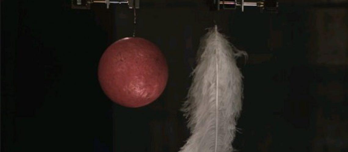 保齡球與羽毛在真空狀態下往下掉